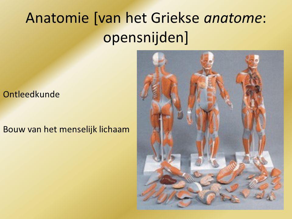 Anatomie [van het Griekse anatome: opensnijden]